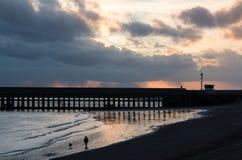 Пляж захода солнца с ходоком собаки на New Haven стоковое изображение