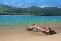 пляж Индонесия тропическая Стоковое Изображение