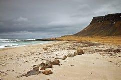 пляж Исландия Стоковое Изображение