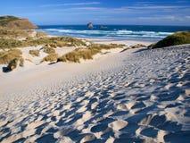 Пляж и дюны Стоковая Фотография