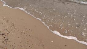 Пляж и море в замедленном движении акции видеоматериалы