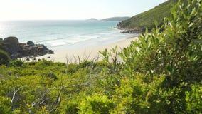 Пляж и океан залива вискиа в национальном парке мыса Wilsons в Австралии, перевозят на грузовиках налево сток-видео