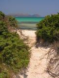 пляж к путю стоковые фотографии rf