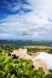 пляж лежа около женщины заводов Стоковые Фотографии RF