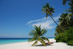 пляж Мальдивы Стоковая Фотография RF