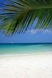 пляж мирный Стоковые Фото