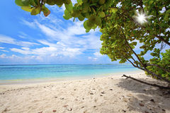 пляж младенца Стоковая Фотография