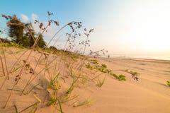 Пляж моря в Таиланде стоковое изображение rf
