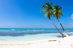 Пляж моря стоковая фотография