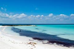 Пляж моря, Isla Mujeres, Мексика Стоковое Изображение RF