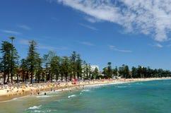 пляж мужественный Стоковое Фото