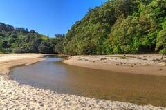 Пляж Новой Зеландии с потоком бежать через его стоковые фотографии rf
