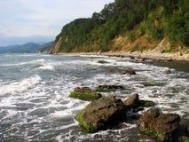 пляж одичалый Стоковые Изображения