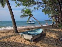 пляж одичалый стоковые фотографии rf