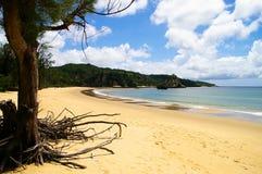 пляж одичалый Стоковое Изображение