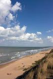 пляж одичалый Стоковые Фото