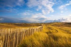 пляж около путя Стоковые Изображения RF