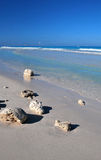 пляж ослабляя Стоковое Фото