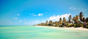 Пляж острова Мальдивов Стоковая Фотография RF