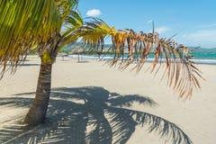 Пляж песка в Кубе стоковое фото