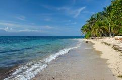 Пляж песка Whit, пальмы, голубой океан и голубое небо стоковое изображение
