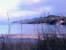 пляж песочный Стоковые Изображения