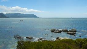 Пляж пингвина, Южная Африка Стоковое Изображение RF