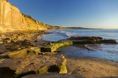 Пляж положения La Jolla сосен Torrey Сан-Диего Калифорния стоковые фотографии rf