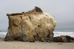 Пляж положения Malibu El матадора, Калифорния Стоковое Изображение