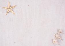пляж предпосылки песочный Стоковое фото RF