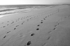 пляж пустой стоковое изображение rf