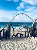 Пляж раковины Puka Стоковые Фото
