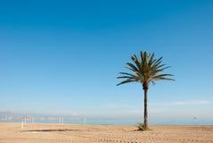 пляж солнечный Стоковое Фото