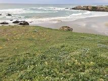 пляж спокойный Стоковое Фото