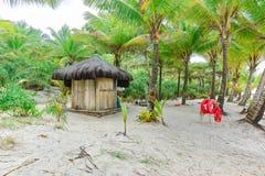 Пляж с пальмами и томбуем кольца Стоковые Изображения RF