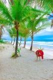 Пляж с пальмами и томбуем кольца Стоковое Изображение RF