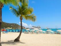 Пляж с пальмой стоковое изображение