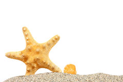 Пляж с песком и starfish Стоковая Фотография