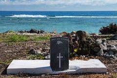 Пляж Тихого океана кокоса большого ветерана войны тягчайший тропический стоковое изображение