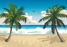 пляж тропический иллюстрация штока