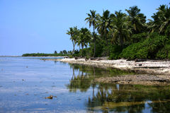 пляж тропический Стоковые Фотографии RF