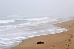 пляж туманнейший Стоковые Фото