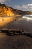 пляж черный california Стоковые Изображения RF