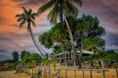 Пляж Шри-Ланка коттеджа лета Стоковое фото RF