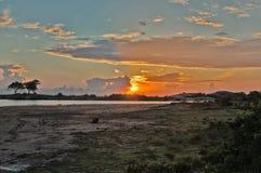 Пляж Шри-Ланка стоковые фотографии rf