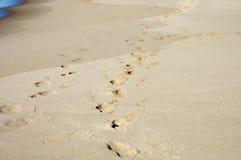 пляж 3 Стоковая Фотография RF