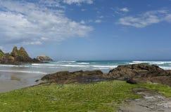 Пляж Allans нового полуострова Зеландии Otago красивый стоковые фотографии rf