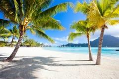 Пляж Bora Bora стоковые изображения