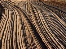 пляж calvi Стоковые Фото