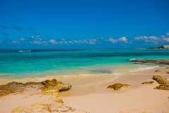 Пляж Cancun мексиканський Delfines тропический в Вест-Инди стоковые фотографии rf